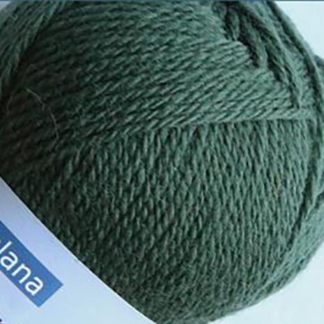 Pernilla - 346 Thuja